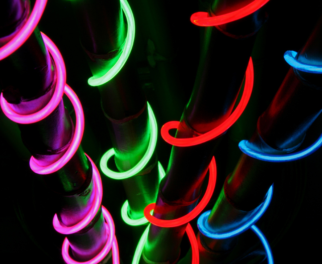 Cool Neon Photo by Jim Daigle