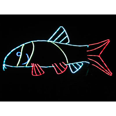 original_fish