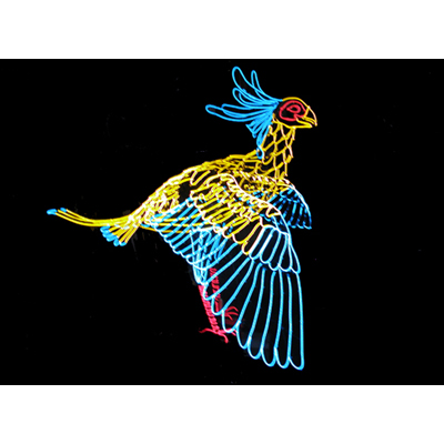 sec_bird