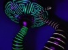 black_light_mushroom